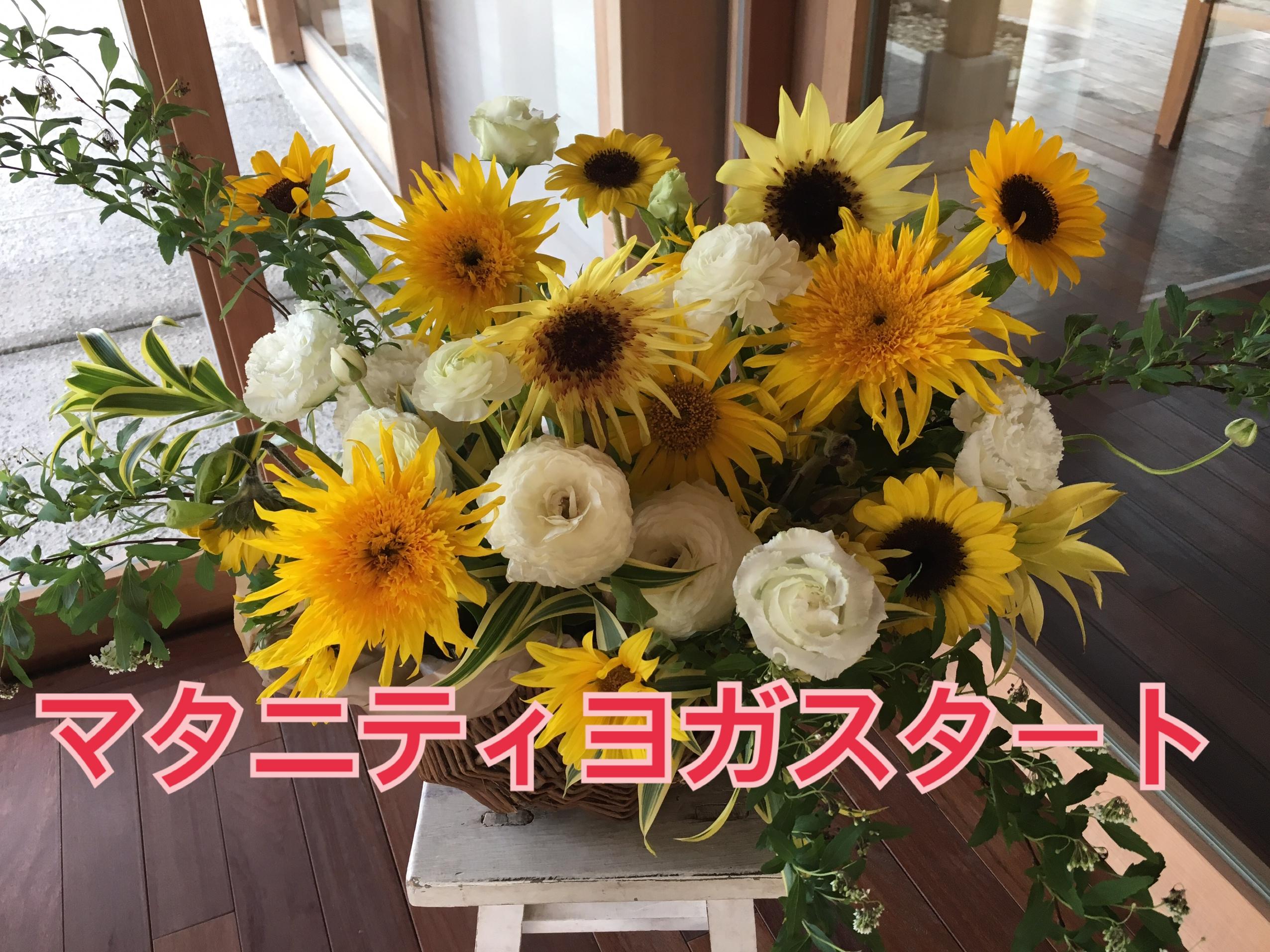 マタニティヨガ、沖縄県、妊婦、ライア